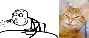 cereal_guy_and_troll_cat