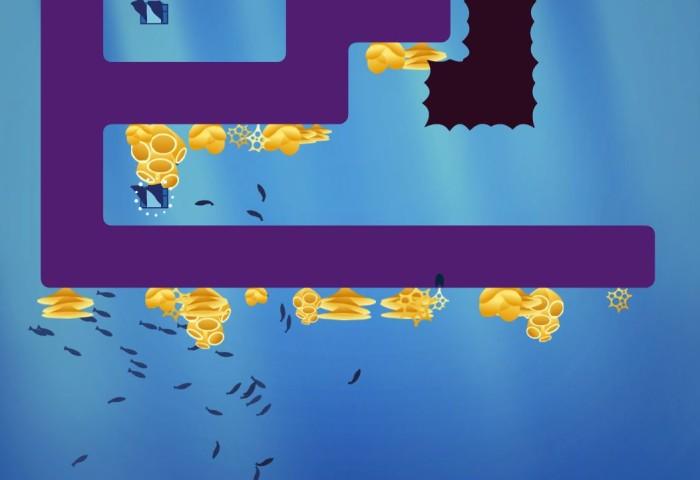Nuotando coi Pescioni